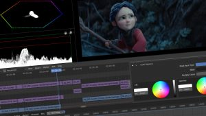 Blender Video Editing software for any use