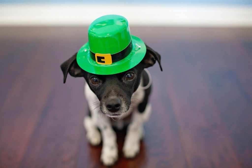 St. Patrick's Day Fundraisers for booster clubs