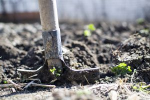Your 4H Booster Club supports students with quality tools like shovels and more