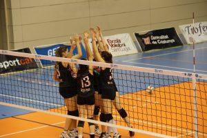 Volleyball team winning a game